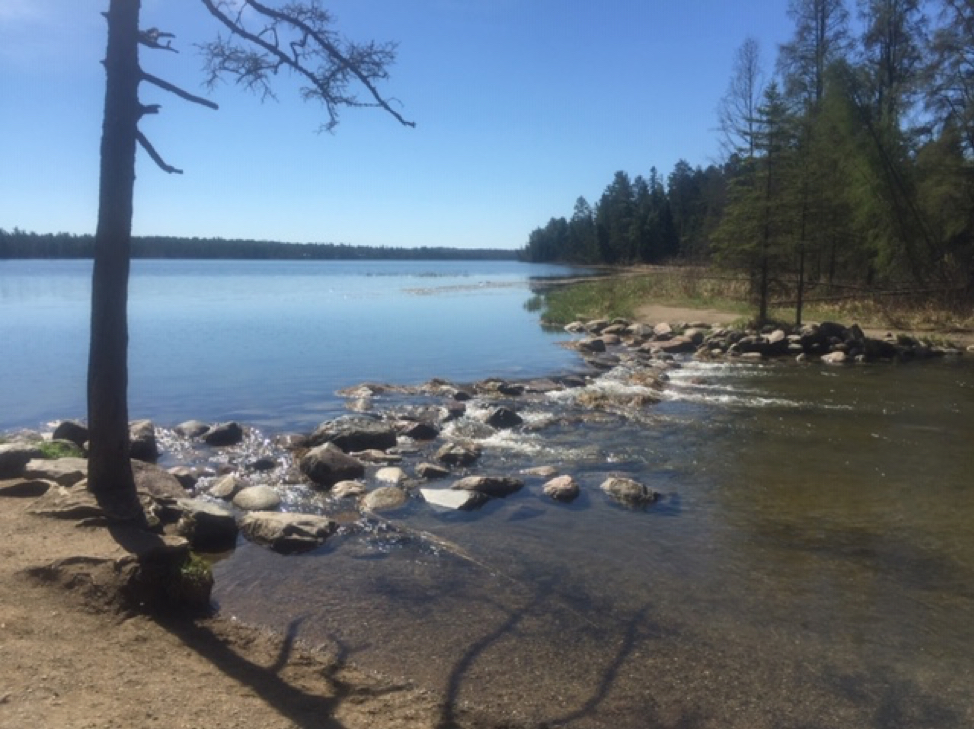 The headwaters of the Mississippi River, Lake Itasca
