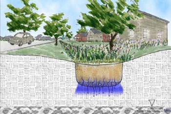 [Graphic: Diagram of a stormwater integrated management practice on a residential yard.]