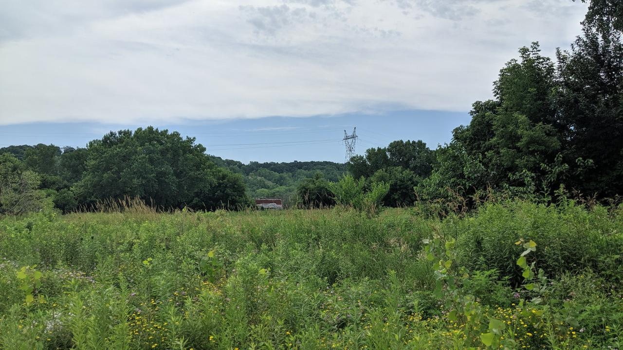 A vacant field with the Mississippi River in the background.