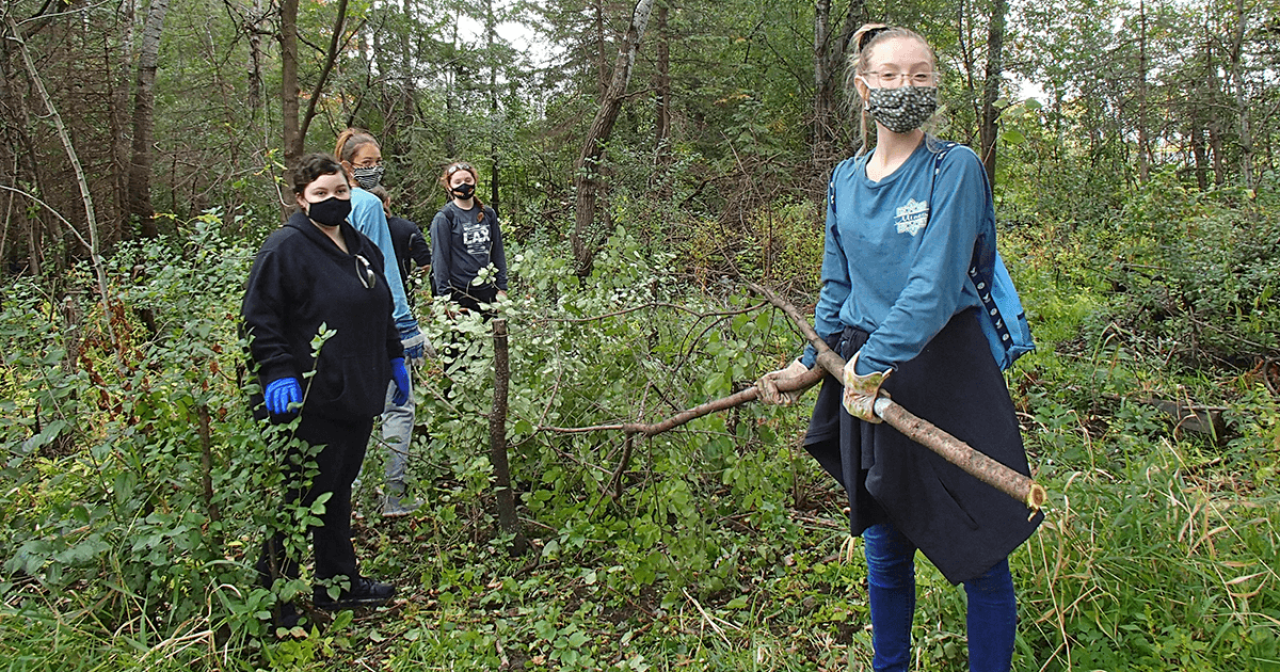 Four youth volunteers stand in a wooded area holding a large buckthorn branch.