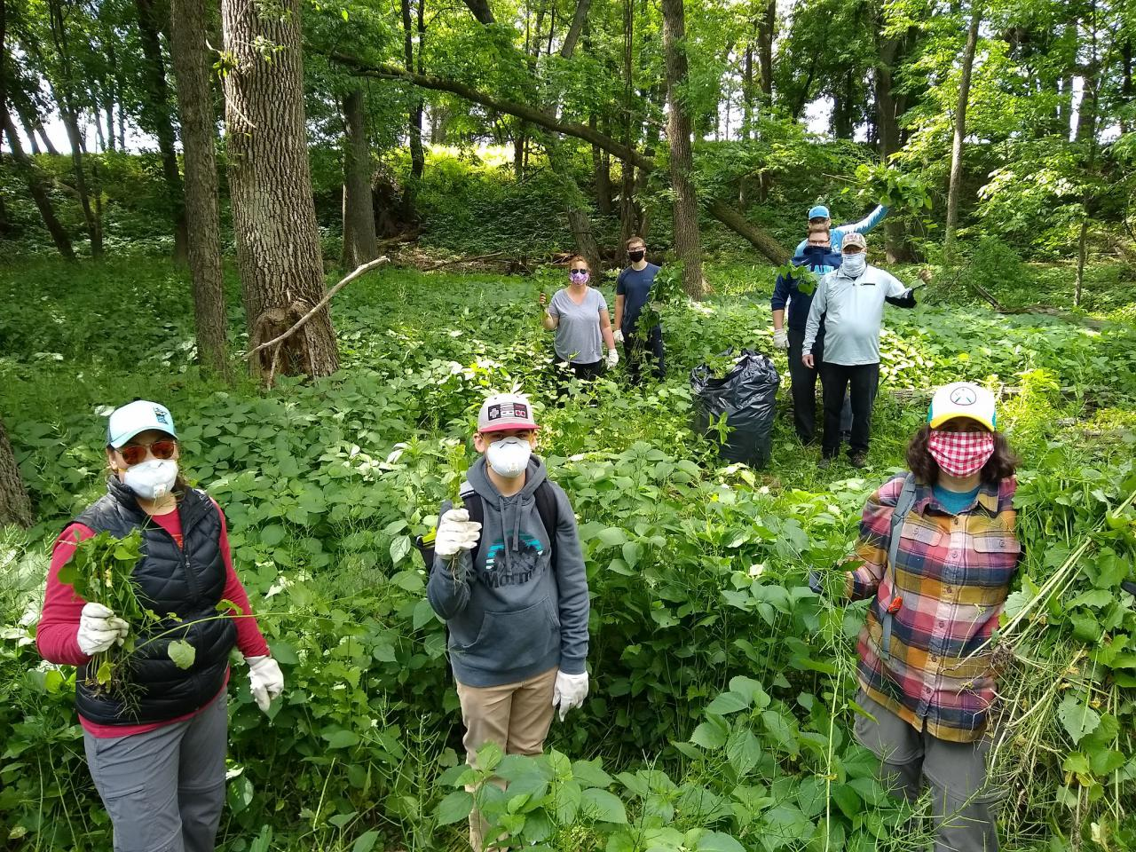 Volunteers show off their invasive haul at the 2020 event tending Houlton Farm