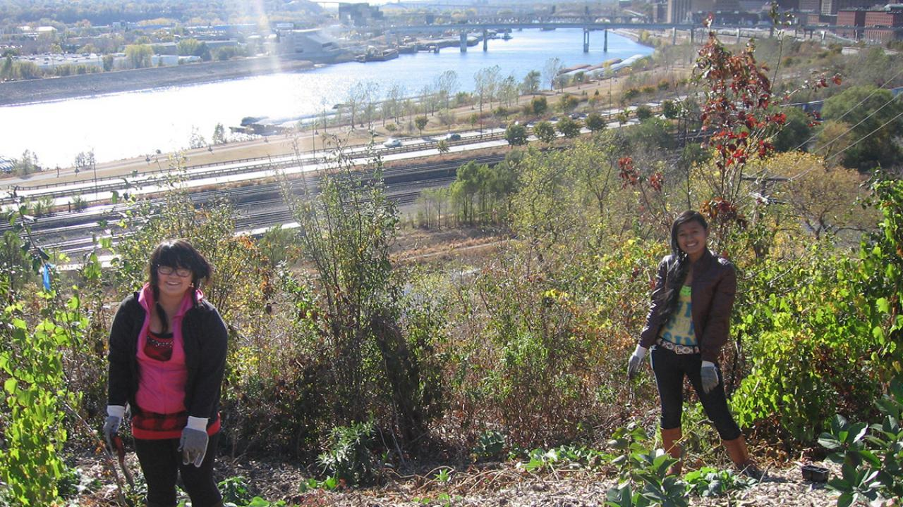 Local teens create habitat, reduce erosion